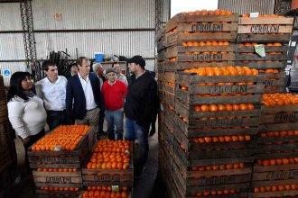 """Bordet, contra la economía de Macri:  """"Si se importan naranjas desde Israel estamos complicados, acá las naranjas sobran"""""""