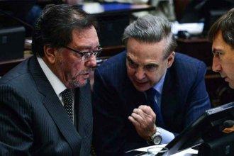 """""""A Macri, Pichetto le aporta más que los radicales"""", opinó Guastavino que suena para reemplazarlo"""