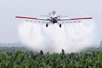 ¿Qué dirá la ciencia acerca de las fumigaciones? La Justicia solicitó informes antes de fallar sobre el amparo