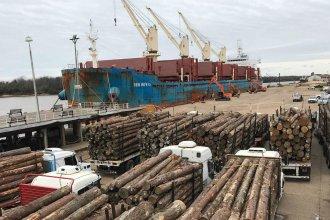Una nueva exportación de madera entrerriana, rumbo al continente asiático