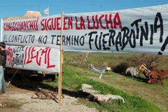Ambientalistas de Gualeguaychú harán una volanteada contra UPM 2