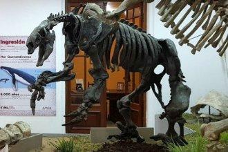Reabre un museo que cuenta la historia de los habitantes más antiguos de Entre Ríos