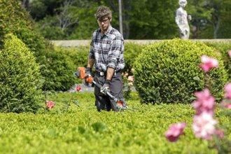 ¿Qué se ha hecho de los jardineros?