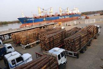 """Ingresó el """"Cape Moreton"""" a cargar madera y esperan al """"Cendana"""" para exportar arroz"""