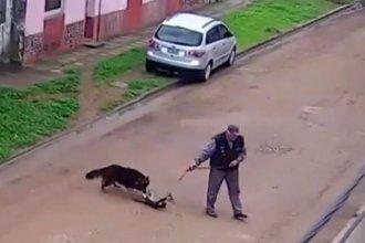Proteccionista acusa a un vecino de Gualeguay de cazar y torturar a un gato