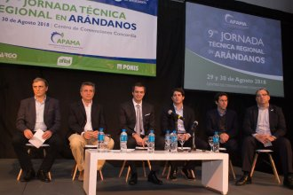 Con dos objetivos bien definidos, los arandaneros del país se reunirán en Concordia
