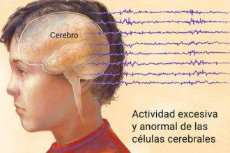 Contextos escolares inclusivos, en una jornada dedicada a la epilepsia