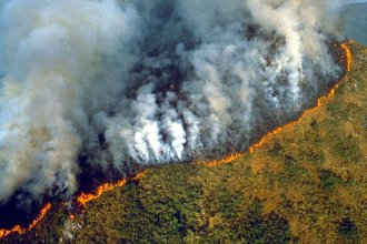 El Amazonas en peligro