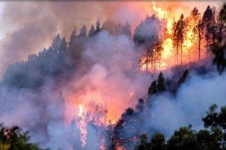 Desde el corazón de Amazonas, un entrerriano cuenta cómo vive de cerca el incendio