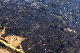 Ayuda entrerriana para combatir el fuego en el Amazonas: 50 bomberos esperan el llamado