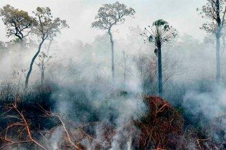 El humo del incendio en el Amazonas afecta a Entre Ríos y otras 16 provincias