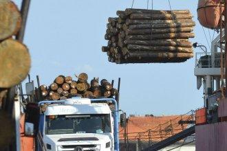 Un nuevo comprador, desde el otro lado del mundo, espera madera entrerriana
