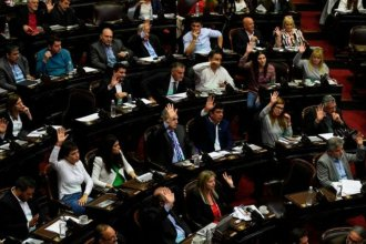 """Por unanimidad, Diputados aprobó el proyecto de """"Emergencia Alimentaria"""""""