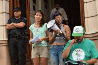 Marihuana para uso personal: absolvieron a la joven entrerriana que tenía plantas en su casa