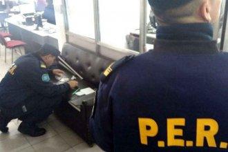 Robaron en la sede de una agrupación Scout y forzaron escritorios en las oficinas del PAMI