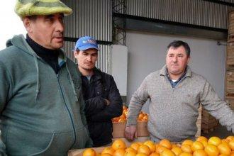 """Empresa familiar entrerriana comenzó a exportar naranjas a Europa: """"Es un esfuerzo grande"""""""