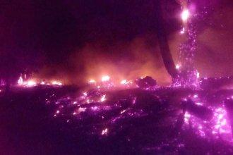 Ardió en llamas una forestación a la vera de la autovía de la RN14