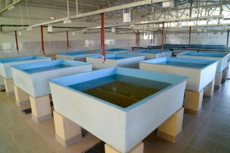 Con Etchevehere presente, inauguraron un centro para producción acuícola en Entre Ríos