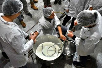 ¿Qué hace tan especial a este queso? Lo presentarán en la Expo Rural de Concordia