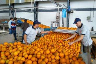 Con USD 10 millones invertidos, cooperativistas inauguraron una nueva fábrica de jugos en la región de Salto Grande