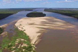 El turismo irresponsable y las crecientes amenazan a las aves que anidan en las islas del río Uruguay