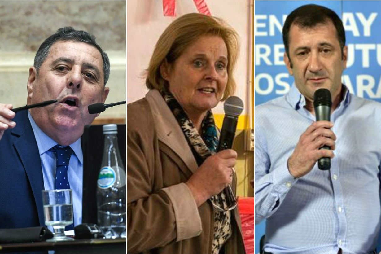 Los 3 al Senado: de Angeli, Olalla y Kueider.