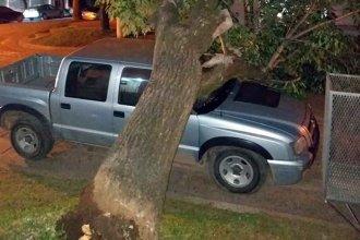 Sin raíces, cayó sobre una camioneta