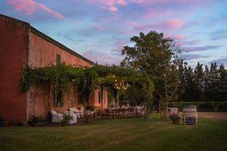 Tras 60 años de proscripción, la resurrección de la vitivinicultura entrerriana ya no pasa desapercibida