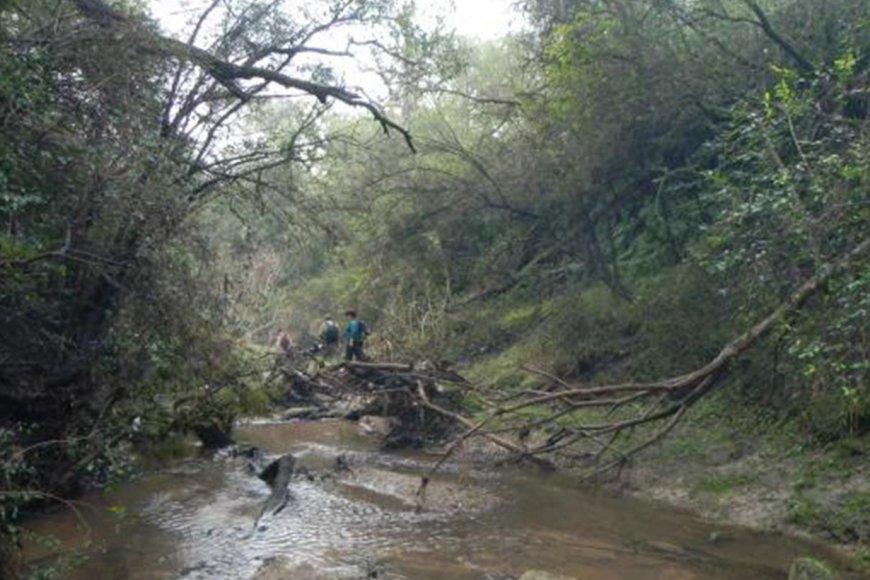 Área natural protegida Don Sebastián - La Paz