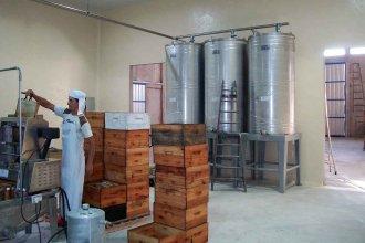De manera cooperativa, productores de la región podrán exportar miel a China
