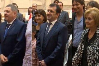 De Angeli, Olalla y Kueider: estos son los nuevos senadores por Entre Ríos