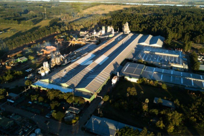 Imagen aérea de la planta de EGGER en Concordia.