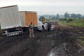 Camión empantanado y vehículos demorados, camino a Mayo