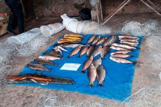 Prefectura Naval sorprendió a tres personas con 40 pescados de especies en veda