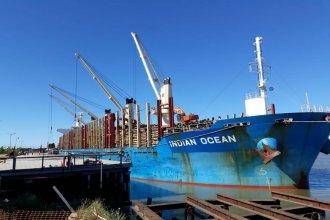 Con destino a China, cargan 34.000 toneladas de madera de pino en el puerto de Ibicuy