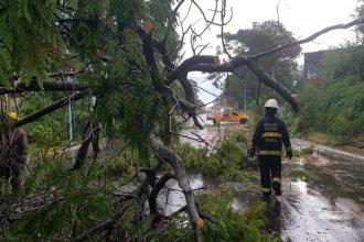 Asisten en diferentes zonas de Concordia y Paraná, afectadas por el fuerte temporal