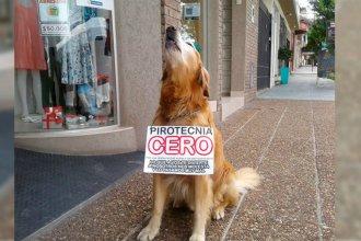 """Con """"Roco"""" en la vereda, dijeron """"no a la pirotecnia"""" en localidad entrerriana"""
