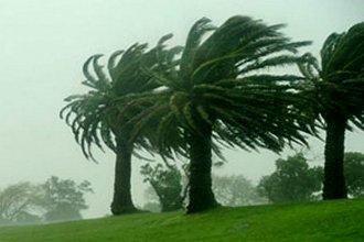Alertan por intensas ráfagas de viento para Entre Ríos