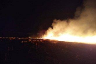 Un incendio intencional consumió 50 hectáreas de rastrojo de trigo sobre la costa del río Uruguay