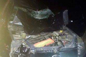 Un auto terminó destrozado tras embestir a un caballo sobre la ruta 127