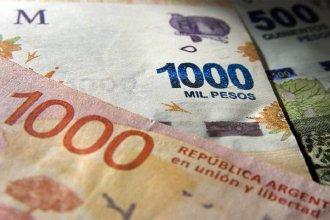 """Chau a los animales en los billetes: serán reemplazados con """"las y los próceres"""" de la historia argentina"""
