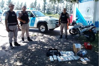 "7 kilos de droga viajaban a bordo de un colectivo, hasta que ""Morena"" se les cruzó en el camino"