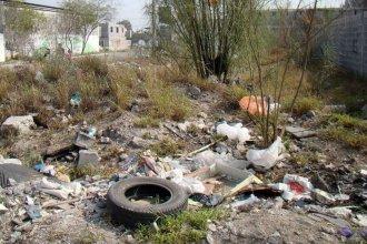 Para evitar propagación de plagas, aplicarán multas a quienes tengan baldíos con acumulación de basura