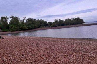 Robaron las boyas en las playas del lago de Salto Grande