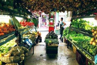 Agroquímicos: pide controles para frutas y verduras que ingresan a Entre Ríos