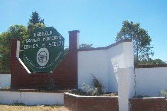 Escuela agrotécnica fue víctima de dos robos en pocos días: se llevaron en total 11 lechones