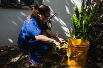 Activaron protocolo ante el primer caso de dengue en la capital provincial