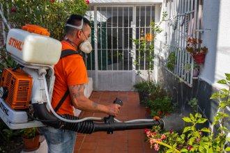 Ya son cuatro los casos de dengue autóctono en pleno centro de Paraná