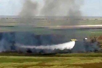 """Incendios del Delta: Bordet realizará una denuncia penal por """"daño ambiental"""" en dos provincias"""