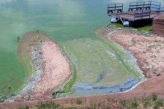 Organizan un evento para identificar las  fuentes de contaminación del Río Uruguay